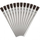 Axminster Disposable Brushes