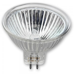 Axminster Bulb for Stayput Lamp