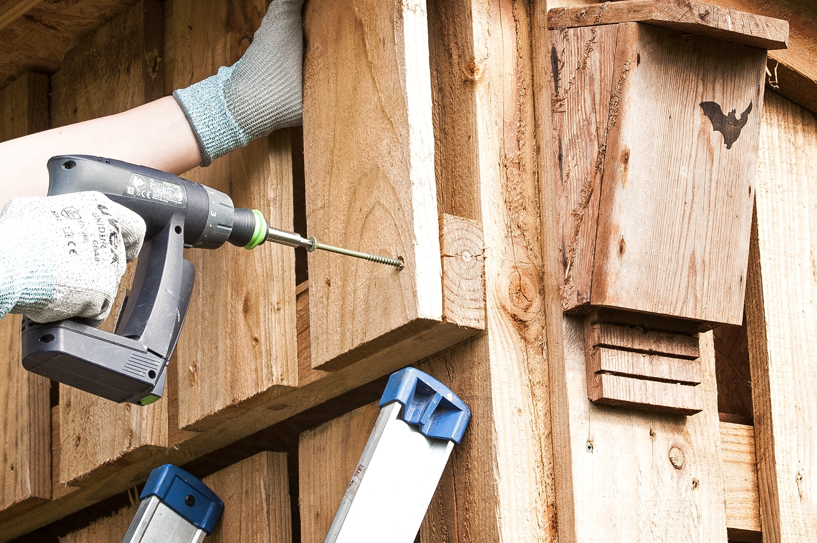 WoodSpur Outdoor Screws