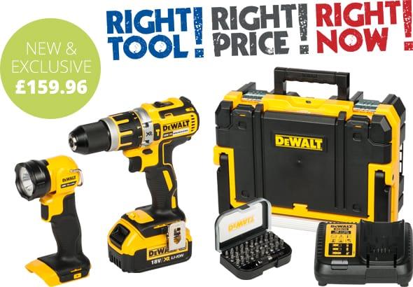 DeWalt Combi Drill & Torch Kit